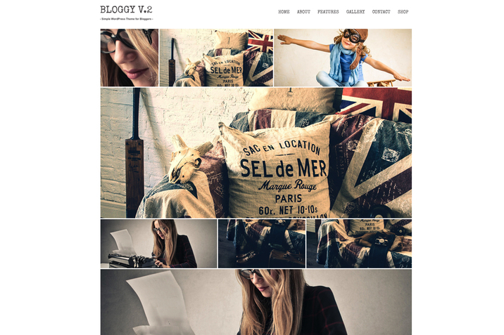 Creativemarket_Bloggy_v2_Blog_WordPress_Theme_59055_cap05