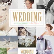 Creativemarket Wedding Lightroom Presets 101567 icon