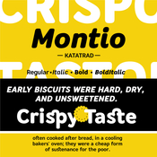 Montio Font Family 4 Fonts icon