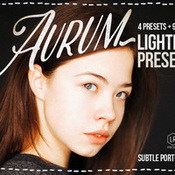 Creativemarket Aurum Lightroom Presets 286363 icon