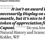 Caponi family commercial type font icon